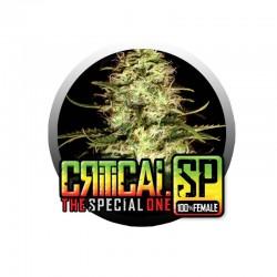 Critical SP